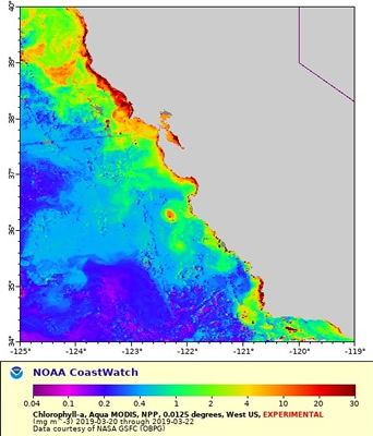 2077cbeb0629b A look at the West Coast's Chlorophyll chart from northern Calif.  southward, bloom of plankton rich water coming off the coastline below SF  seaward